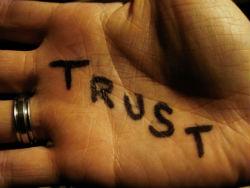 trusted brands win
